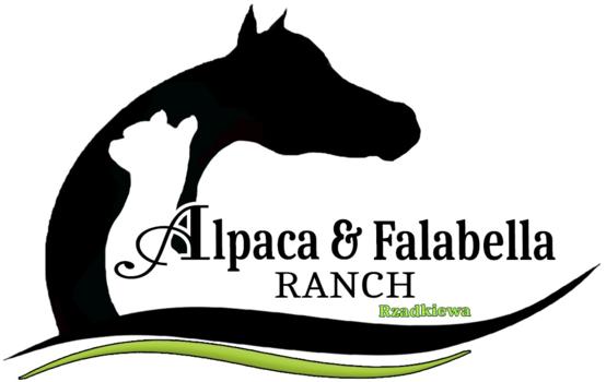 Logo van Alpaca & Falabella Ranch Rzadkiewa